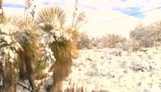 Arizona, desert, snow
