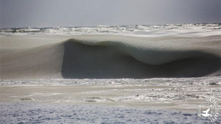 wave, ice