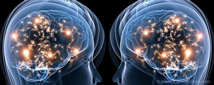 De l 39 influence du pouvoir sur l 39 empathie la science de for Neurone miroir autisme