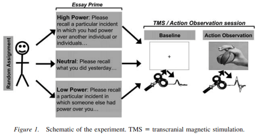 transcranial magnetic stimulation essay