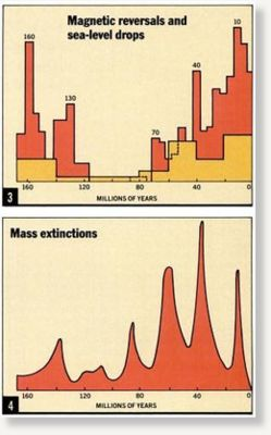 Magnetic Reversal Extinction