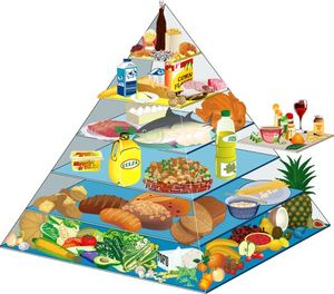 Nourriture diététique faible en gras
