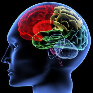 « Il y a quelqu'un dans ma tête, mais ce n'est pas moi » dans A lire iStock_000005809739XSmall