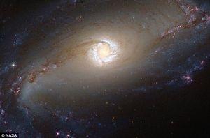 A 45 millions d'années lumière de la Terre, la constellation de Fornax