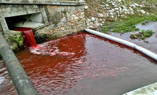 Du jour au lendemain une rivière devient rouge sang en Slovaquie Article_2517516_19CE247D000005