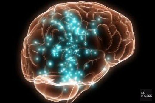 Chimiques nuisent au cerveau des enfants, disent des chercheurs