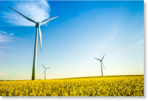 Éoliennes : la mort est proche