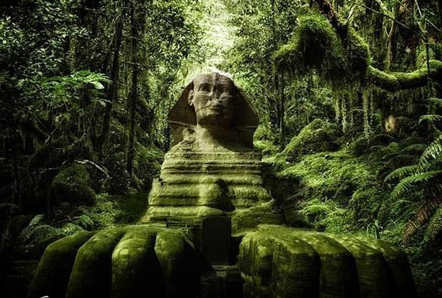 "Sahara ""vert"" Green_sahara_sphinx"