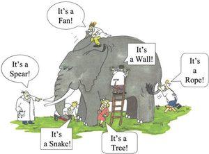 blind men elephant