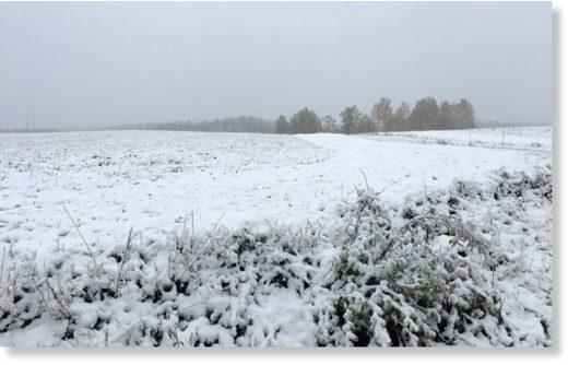 Friday morning in Tohmajärvi, North Karelia.
