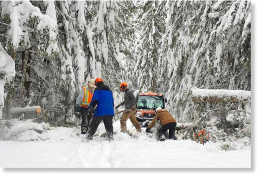 A crew removes downed trees from Larch Hills cross-country ski area trails.