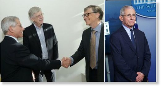 bill gates anthony fauci