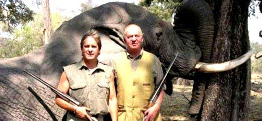 Juan Carlos, Espagne, elephant