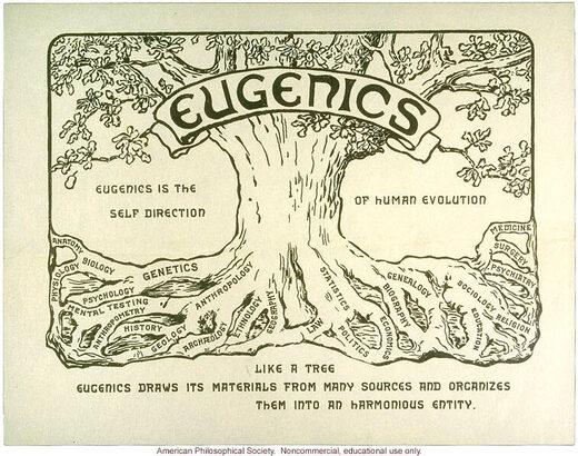 Eugénisme