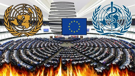 OMS, UE, ONU